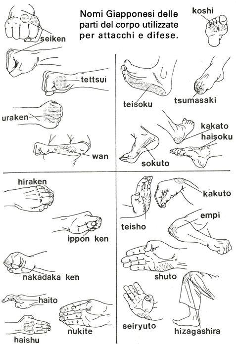 Heijo Shin Dojo - Parti del corpo in giapponese